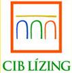 cib_lizing
